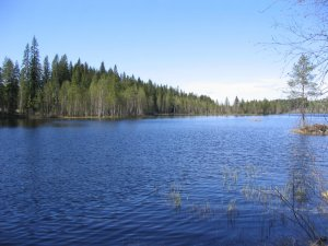 A Finnish lake
